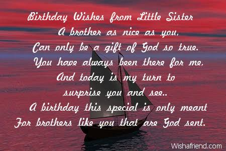 happy birthday sister from brother poems