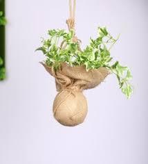<b>Artificial Plants</b>: Buy <b>Artificial Plants</b>/<b>Trees</b> Online at Wholesale ...