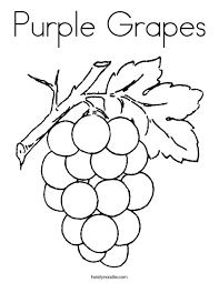Small Picture Purple Grapes Coloring Page Twisty Noodle