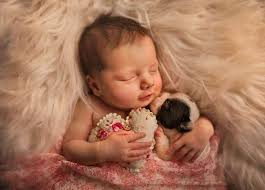 Image result for babies and animals sleeping