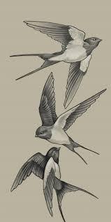 Pin by Colleen Ratliff on эскизы   Tattoo art drawings, Bird ...