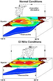 What Unusual Pattern Occurs During El Niño Extraordinary What Is El Niño El Nino Theme Page A Comprehensive Resource