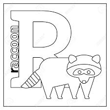 着色ページまたはカード英語動物動物園アルファベットの子どもたちアライグマ R ベクトル イラスト