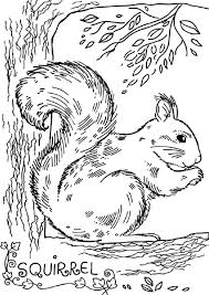 Squirrel Coloring Pages Color It Squirrel Coloring Pages Free
