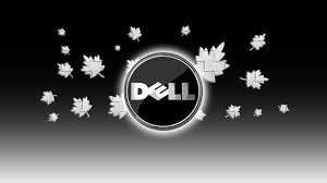 dell wallpapers 25 1920 x 1080 768x432