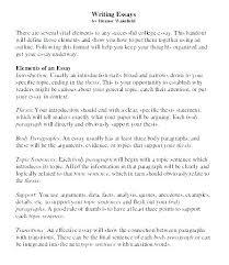 Example Of Good College Essay Good Narrative Essay Example Good