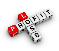 Profit And Loss Statement 12 Month Profit And Loss Projection Score