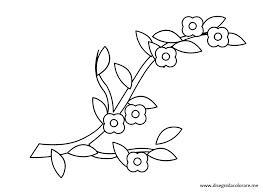 Disegni Di Primavera Ramo Con Fiori Disegni Da Colorare