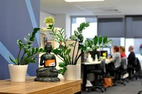 green office design. A Small Buddha Statue Holds GoGet Smart Card Between Two Green Office Plants. An Design