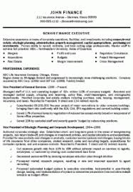 Resume Examples 2016 top executive resumes Tolgjcmanagementco 54