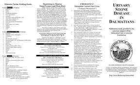 Closeup Issue No 10 Dalmatian Club Of America