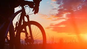 Repairing And Maintenance Bicycle Repair And Maintenance Cafe
