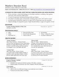 Freelance Resume Writer Jobs Freelance Writing Resume Samples Beautiful Freelance Resume Writer 2