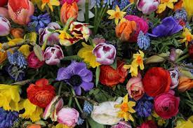 Herzlichen Glückwunsch liebe Therese Images?q=tbn:ANd9GcTNOr1VKZz2S3PpTpJWlP06_X1Y4YNf-gzbvteF32PMOsumUpF83YHqbZuejSoY0R9Vr-8&usqp=CAU