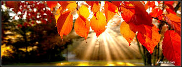 fall images for facebook cover red leaves of autumn facebook covers red leaves of autumn fb covers