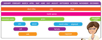 Austin Allergy Season Chart Austin Allergy Calendar 1 1800forbail