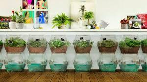 aquaponic gardening. aquaponic gardening