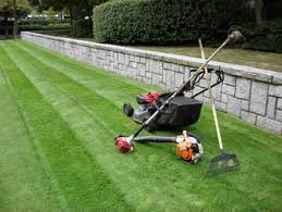 Spring Lawn Care Maintenance Tips