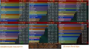 A Test On Tbc Melee Dps Classes Wowservers