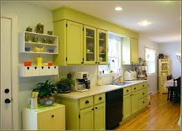 Kitchen Cupboard Organizing Organizing Kitchen Cabinets Ideas Home Design Ideas