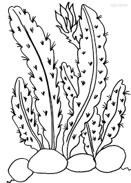 Small Picture Unique Cactus Coloring Page 46 For Your Coloring Pages For Adults