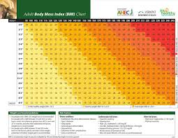 Weight Chart For Women 3 Sample Height And Weight Chart Templates For Women Free