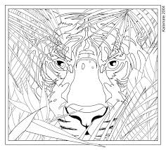 Small Picture Complex coloring pages of animals ColoringStar