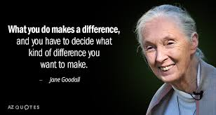 Jane Goodall Quotes Unique TOP 48 QUOTES BY JANE GOODALL Of 48 AZ Quotes