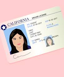 10 beauty secrets for getting the perfect driver s license photo