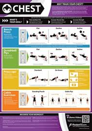 Gym And Fitness Chart Chest L