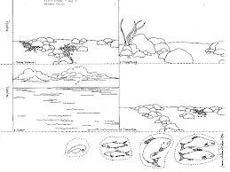 Water Cycle Worksheet 3rd Grade