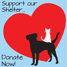 animal shelter donate. Contemporary Donate Special Pals Shelter  NoKill Animal  LowCost Wellness Clinic  Katy TX Inside Donate