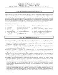 Financial Auditor Sample Resume Best Solutions Of Auditor Resume For Financial Auditor Sample Resume 6