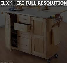 Diy Kitchen Cabinets Edmonton Kitchen Cupboard Door Paint Maxphotous Design Porter