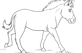 Coloring Pages For Zebra Zebra Without Stripes Page Best Of ...