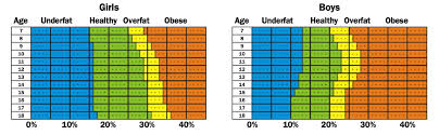 Inner Image What Is Body Composition