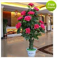 office pot plants. Beautiful Office 2018 2014 New Artificial Rose Peony Silk Flower Tree Potted Plants For  Christmas Ornament Home Office Living Room Decor Wedding Party Decoration From  With Pot