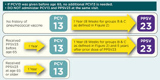Focus On Pneumococcal Vaccines For Adults American