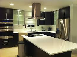 ... IKEA Painting Kitchen Cabinets Ideas ...
