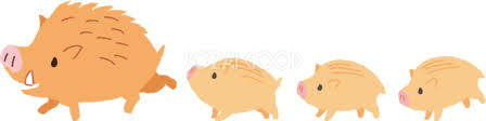 「イノシシ干支イラスト」の画像検索結果