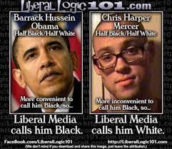Meme Exposes How Liberal Media Manipulates Race to Push Agenda ... via Relatably.com