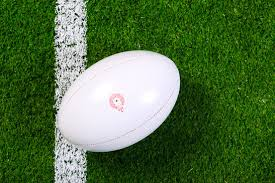 artificial grass rugby