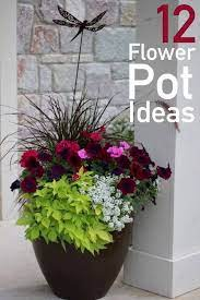 potted plants patio