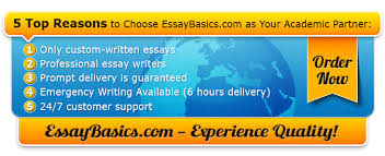 importance of accountability essay sample example essay writing