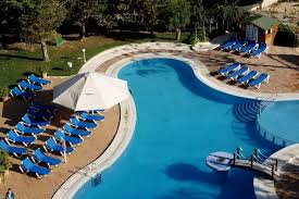 swimming pool lounge chair. Free Form Outdoor Swimming Pool Design With Blue Lounge Chairs Chair