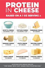 Cheese Protein A K A Casein What You Should Know