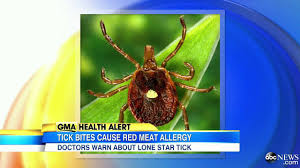 Lone Star Tick Bite Can Make You Allergic to Red Meat - YouTube