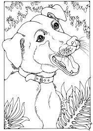 Disegno Da Colorare Cane Meticcio Cat 28200 Images
