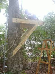 tree house plans for one tree. 2010 Was Spent Mostly Building The Bridges That Stretch From Tree House To Almost Zip Line. Looks Like A 2012 Job Finish Work: Plans For One