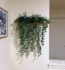 make a floating plant wall shelf